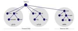 PTR Kaydı ve Ters IP Kontrolü